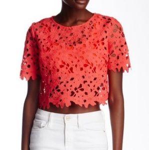 ASTR the Label Crochet Crop Top